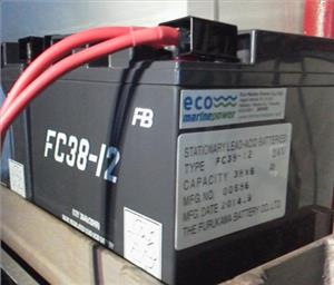 FC38-12 Battery (Photo: EMP)
