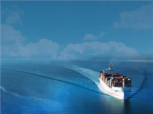 shippinginsight web.jpg